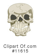 Royalty-Free (RF) Skull Clipart Illustration #11615