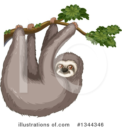Sloth Clipart #1344346 by Graphics RF