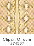 Snake Skin Clipart #74507 by Monica