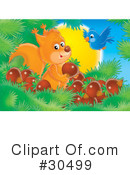 Royalty-Free (RF) Squirrel Clipart Illustration #30499