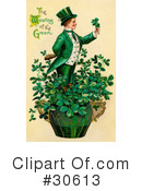 St Patricks Day Clipart #30613