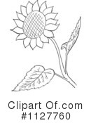 Royalty-Free (RF) sunflower Clipart Illustration #1127760