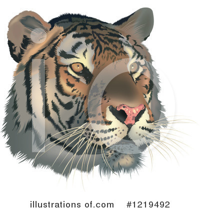 Tiger Clipart #1219492 by dero