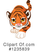 Tiger Clipart #1235839 by Pushkin