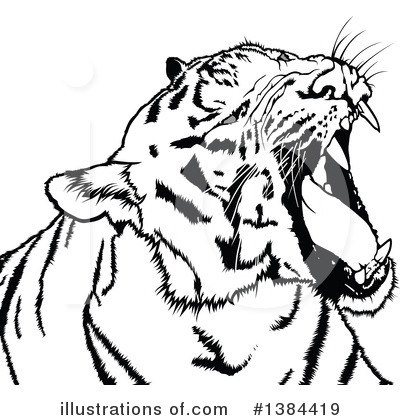 Tiger Clipart #1384419 by dero
