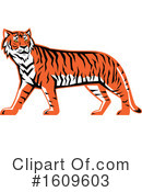 Tiger Clipart #1609603 by patrimonio