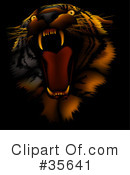 Royalty-Free (RF) Tiger Clipart Illustration #35641