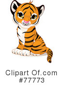 Royalty-Free (RF) Tiger Clipart Illustration #77773