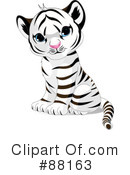 Royalty-Free (RF) Tiger Clipart Illustration #88163