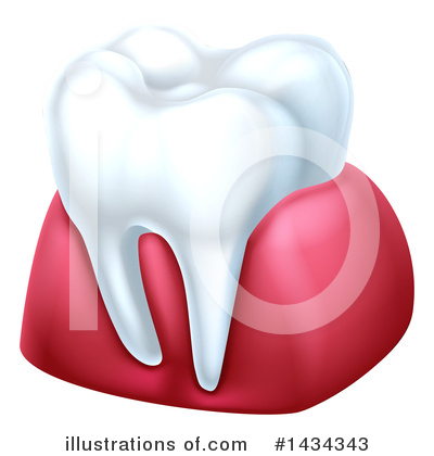 Tooth Clipart #1434343 by AtStockIllustration