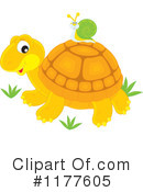 Royalty-Free (RF) tortoise Clipart Illustration #1177605