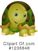 Royalty-Free (RF) Tortoise Clipart Illustration #1236848