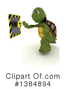 Tortoise Clipart #1384894 by KJ Pargeter