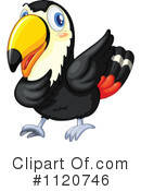 Royalty-Free (RF) Toucan Clipart Illustration #1120746