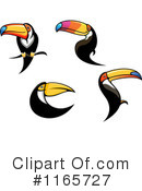 Toucan Clipart #1165727 by Vector Tradition SM
