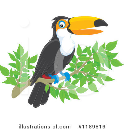 Toucan Clipart #1189816 by Alex Bannykh