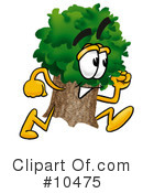 Royalty-Free (RF) Tree Clipart Illustration #10475