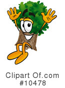 Royalty-Free (RF) Tree Clipart Illustration #10478