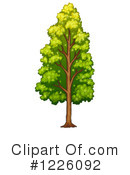 Royalty-Free (RF) Tree Clipart Illustration #1226092