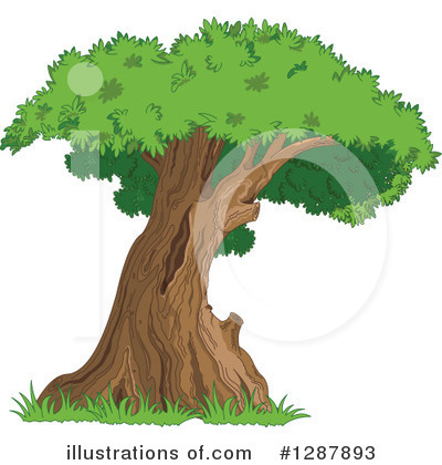 Tree Clipart #1287893 by Pushkin
