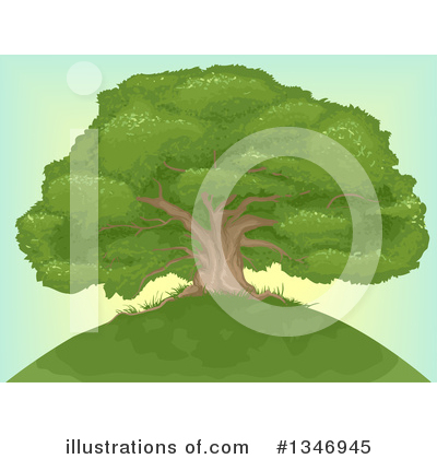 Royalty-Free (RF) Tree Clipart Illustration by BNP Design Studio - Stock Sample #1346945