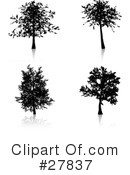 Tree Clipart #27837 by KJ Pargeter