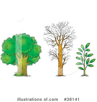 Tree Clipart #38141 by Alex Bannykh