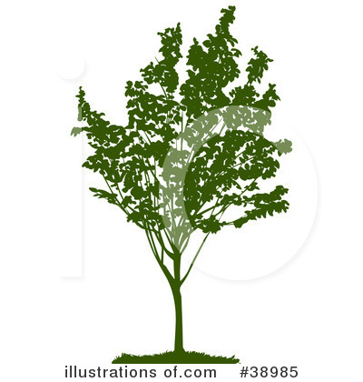 Tree Clipart #38985 by Tonis Pan