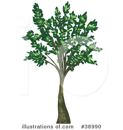 Tree Clipart #38990 by Tonis Pan