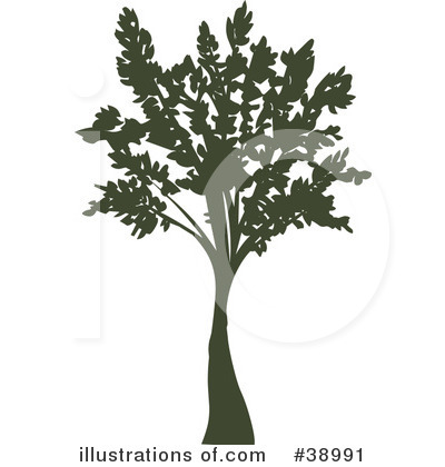 Tree Clipart #38991 by Tonis Pan