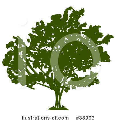 Tree Clipart #38993 by Tonis Pan