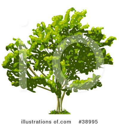Tree Clipart #38995 by Tonis Pan