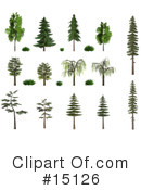 Royalty-Free (RF) Trees Clipart Illustration #15126