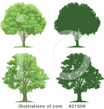 Tree Clipart #21606 by Tonis Pan