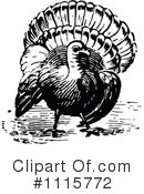 Turkey Bird Clipart #1115772 by Prawny Vintage