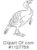 Royalty-Free (RF) Turkey Bird Clipart Illustration #1127759