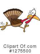 Turkey Bird Clipart #1275500 by toonaday