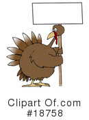 Turkey Bird Clipart #18758