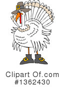Turkey Clipart #1362430 by djart