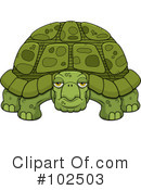 Royalty-Free (RF) Turtle Clipart Illustration #102503
