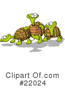 Turtles Clipart #22024
