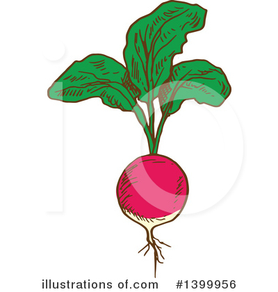 Royalty-Free (RF) Vegetable Clipart Illustration by Vector Tradition SM - Stock Sample #1399956