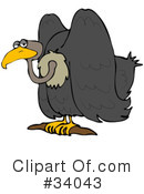 Royalty-Free (RF) Vulture Clipart Illustration #34043