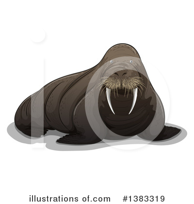 Walrus Clipart #1383319 by Graphics RF