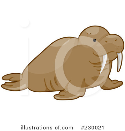 Walrus Clipart #230021 by BNP Design Studio