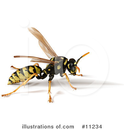 Wasp Clipart #11234 by Leo Blanchette