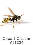 Royalty-Free (RF) Wasp Clipart Illustration #11234