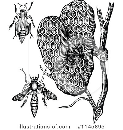Royalty-Free (RF) Wasp Clipart Illustration by Prawny Vintage - Stock Sample #1145895