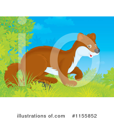 Weasel Clipart #1155852 by Alex Bannykh