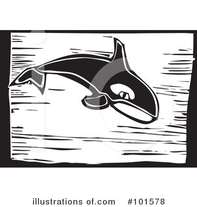 Whale Clipart #101578 by xunantunich